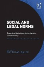 Social and Legal Norms