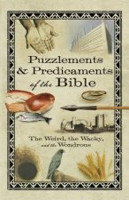 Puzzlements & Predicaments of the Bible