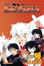 Inuyasha, Vol. 10 (VIZBIG Edition)