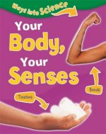 Your Body, Your Senses
