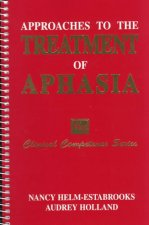 Approaches to Treatment of Aphasia