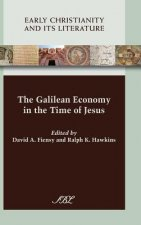 Galilean Economy in the Time of Jesus