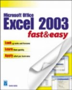Microsoft Excel 2003 Fast and Easy