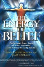 Energy of Belief