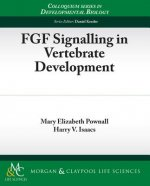 FGF Signaling in Vertebrate Development