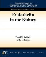 Endothelin and Kidney Function
