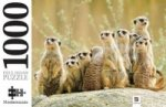 Meerkat Family 1000 Piece Jigsaw