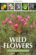 Wild Flowers of Southeast Botswana