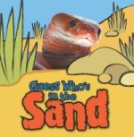 Guess Who is in...Sand