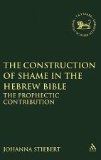Construction of Shame in the Hebrew Bible