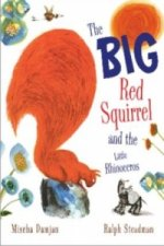 Big Red Squirrel and the Little Rhinoceros