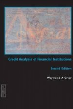 Credit Analysis of Financial Institutions