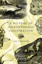 History of Paleontology Illustration