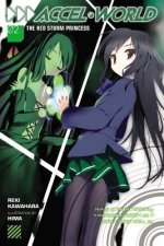 Accel World (Novel)