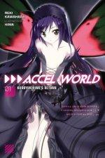 Accel World, Vol. 1 (light novel)