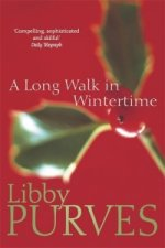Long Walk in Wintertime