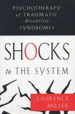 Shocks to the System