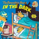 Berenstain Bears in the Dark