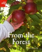 Fantastic Forest Red Level Non-Fiction: From the Forest