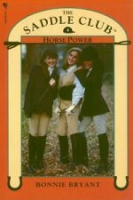 Saddle Club Book 4