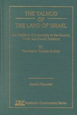 Talmud of the Land of Israel, an Academic Commentary