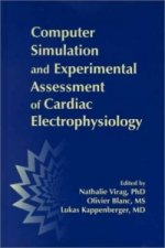 Computer Simulation and Experimental Assessment of Cardiac Electrophysiology