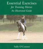 Essential Exercises for Training Horses
