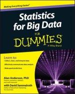 Statistics for Big Data For Dummies