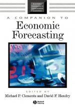 Companion to Economic Forecasting