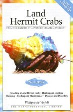 Land Hermit Crabs