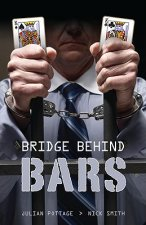 Bridge Behind Bars...