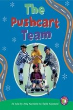 Pushcart Team PM Non Fiction Level 25 Technology in Action Emerald