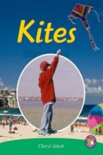 Kites PM Non Fiction Level 26 Technology in Action Emerald