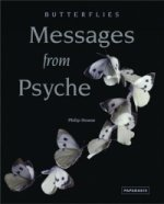 Butterflies - Messages from Psyche