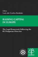 Raising Capital in Europe