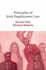Principles of Irish Employment Law