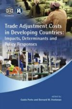 Trade Adjustment Costs in Developing Countries