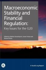 Macroeconomic Stabilty and Financial Regulation: Key Issues for the G20