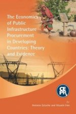 Economics of Public Infrastructure Procurement in Developing Countries: Theory and Evidence