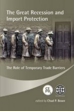 Great Recession and Import Protection