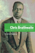 Mariner, Renegade and Castaway: Chris Braithwaite