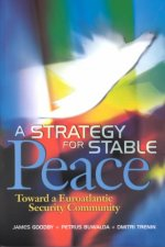 Strategy for Stable Peace
