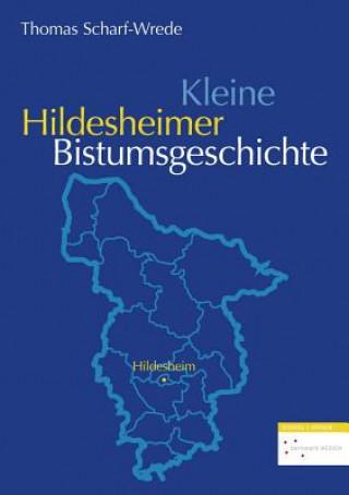 Kleine Hildesheimer Bistumsgeschichte
