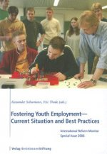 Fostering Youth employment--Current Situation and Best Practices