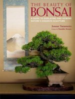 Beauty Of Bonsai, The: A Guide To Displaying And Viewing