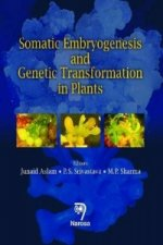 Somatic Embryogenesis and Genetic Transformation in Plants