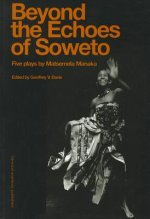 Beyond the Echoes of Soweto