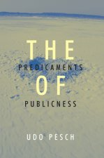 Predicaments of Publicness