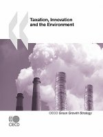 Taxation, Innovation and the Environment