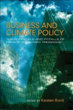 Business and Climate Policy